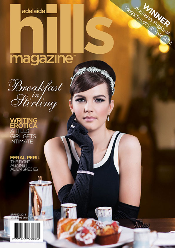 AHM Spring 2013 Cover 1